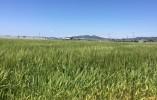 愛知県西尾市 介護,comから応募すると、働くまでの道のりを丁寧にサポートします&働いてからもサポートします! イメージ