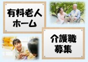 29.11.29③ 介護 有料