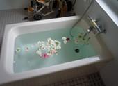 GHもやい志和入浴
